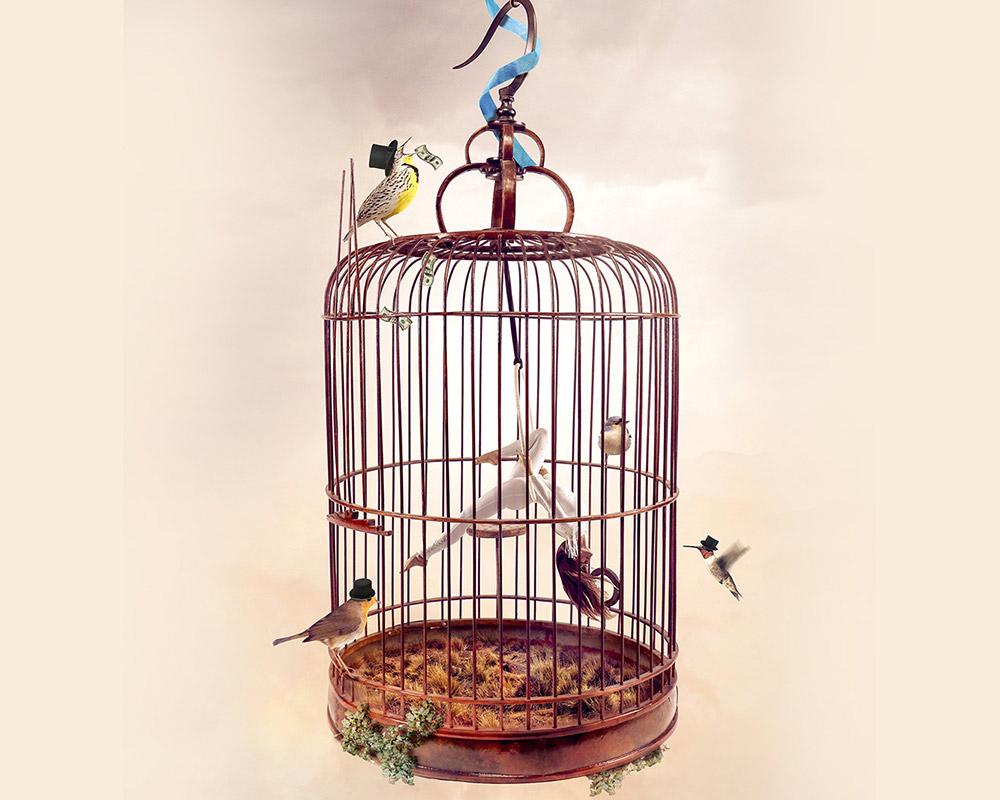 photomontage-cage